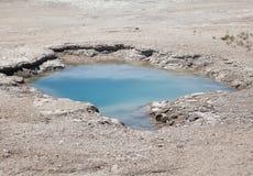 Yellowstone varm vår Royaltyfria Foton