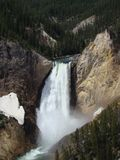 Yellowstone vattenfall Royaltyfria Foton