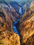 Yellowstone vermindert dalingen Stock Foto's