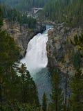 Yellowstone vermindert dalingen stock afbeelding