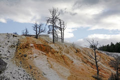 Yellowstone view Royalty Free Stock Photography