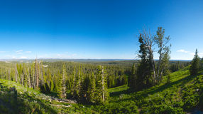 Yellowstone Vista Panorama Royalty Free Stock Photography