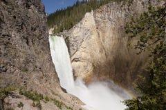 Yellowstone-Wasserfall Stockfoto