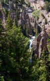Yellowstone-Wasserfall Stockfotografie
