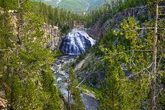 Yellowstone water fall Stock Image