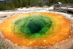 Yellowstone-Windepool Stockfoto
