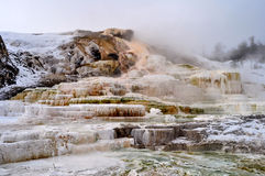 Yellowstone in winter Royalty Free Stock Photo