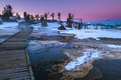 Yellowstone Winter Landscape at Sunset Stock Images