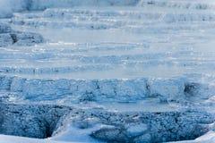 Yellowstone-Winter - Nahaufnahme von Geysirbakterien im Winter Stockbilder