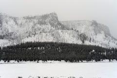 Yellowstone Winter Royalty Free Stock Photos