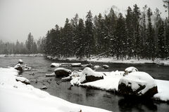 Yellowstone Winter Snow Madison River Stock Image