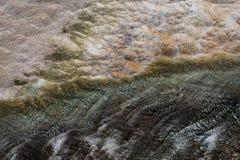 Yellowstone Witte en Blauwe Texturen Stock Foto