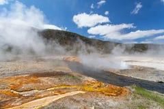 Yellowstone, Wyoming, EUA Fotografia de Stock