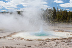 Yellowstone, Wyoming, U.S.A. Immagine Stock