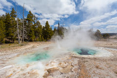 Yellowstone, Wyoming, U.S.A. Fotografia Stock