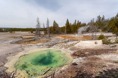 Yellowstone, Wyoming, USA Stockfotos