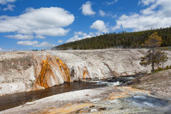 Yellowstone, Wyoming, USA Stockfoto