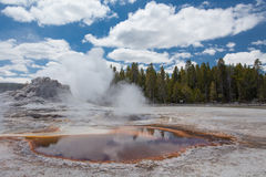 Castle geyser, Yellowstone, Wyoming, USA Royalty Free Stock Photo