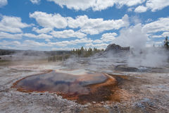 Castle geyser, Yellowstone, Wyoming, USA Stock Photography
