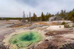 Yellowstone, Wyoming, USA stock photos