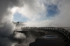 Yellowstonegeiser in de vroege ochtend Royalty-vrije Stock Afbeeldingen