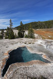 Yellowstonel Park. Stock Photography