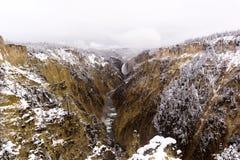 Yellowstonerivier in de Sneeuw royalty-vrije stock fotografie