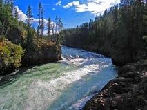 Yellowstonerivier in de zomer van 2005 net boven Yellowstone-Dalingen stock foto