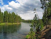 Yellowstonerivier die terug naar Yellowstone-Meer kijken stock fotografie