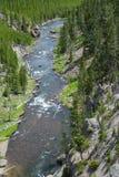 Yellowstonerivier die van een afstand wordt gezien. stock foto's
