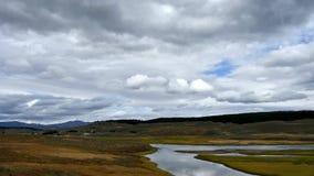 Yellowstonerivier en Hayden Valley stock videobeelden