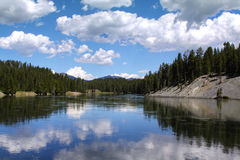 Yellowstonerivier, het Nationale Park Wyoming de V.S. van Yellowstone Stock Foto