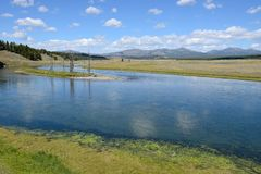 Yellowstonet River Arkivfoto