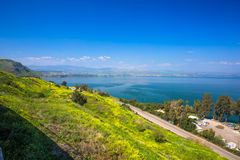 Free Yelloy Flowers Near Sea Of Galilee In Sunny Spring Day. Beautiful Israel Nature Royalty Free Stock Photo - 66673435