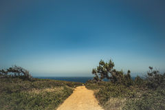 Yelloy road to the sea coast. Royalty Free Stock Photography