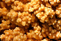 Yelow calcite mine like flower Royalty Free Stock Photography