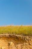 Yelow dry grass straw Royalty Free Stock Photo