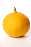 Yelow pumkin Stock Photo