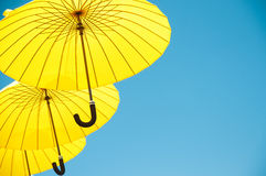 Yelow umbrellas. Stock Photos