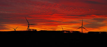 Yelvertoft Wind Farm Silhouetted at Sunset Royalty Free Stock Photo