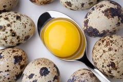 Yema de huevo en cuchara Foto de archivo