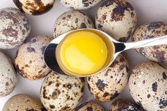 Yema de huevo en cuchara Imagen de archivo