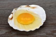 Yema de huevo y albumen Egg en cáscaras del mar en el fondo de madera imágenes de archivo libres de regalías