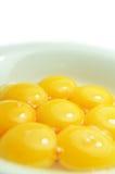 Yemas de huevo Imágenes de archivo libres de regalías
