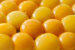 Yemas de huevo amarillas fotos de archivo