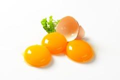 Yemas de huevo crudas Fotos de archivo libres de regalías