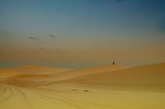 yemen Île de Socotra Abandonnez le paysage avec la silhouette du calme loin Photos stock