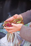 Yemeni man selling qat, leaves, Sana'a, daily life Stock Photos
