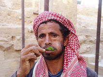 Yemeni qat Stock Photography
