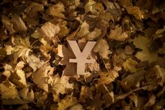 Yen eller Yuan Currency Symbol på Autumn Leaves i sol för sen afton royaltyfri bild